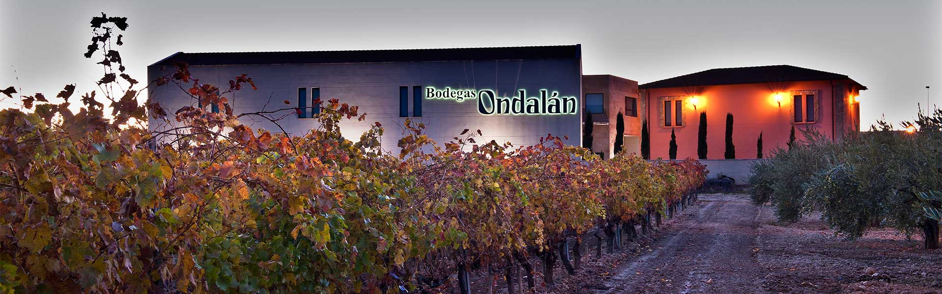 Bodegas Ondalán. Bodega y viñedo de Rioja Alavesa